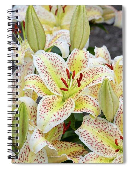 Lilium Tigermoon Spiral Notebook