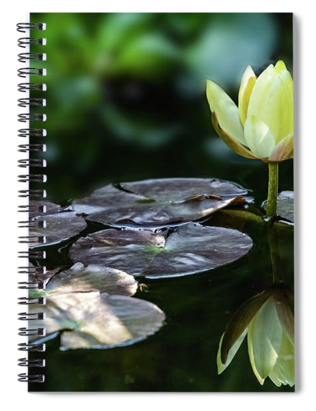 Lily In The Pond Spiral Notebook