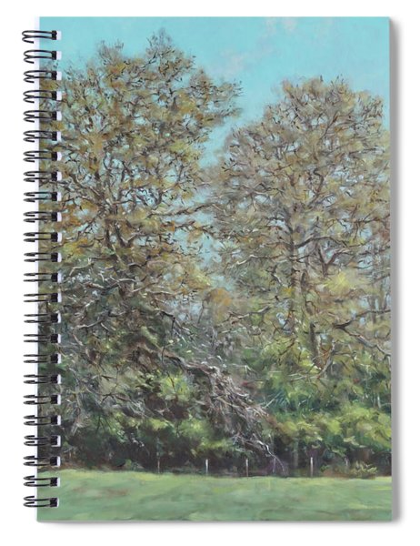 Line Of Trees In Hampshire During Autumn Spiral Notebook