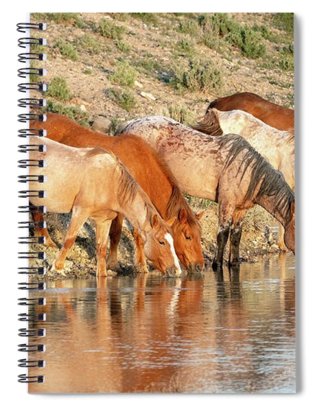 Lineup At The Pond-- Wild Horses Spiral Notebook