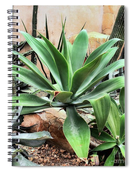 Lion's Tail Agave Spiral Notebook