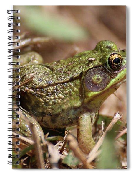 Little Green Frog Spiral Notebook