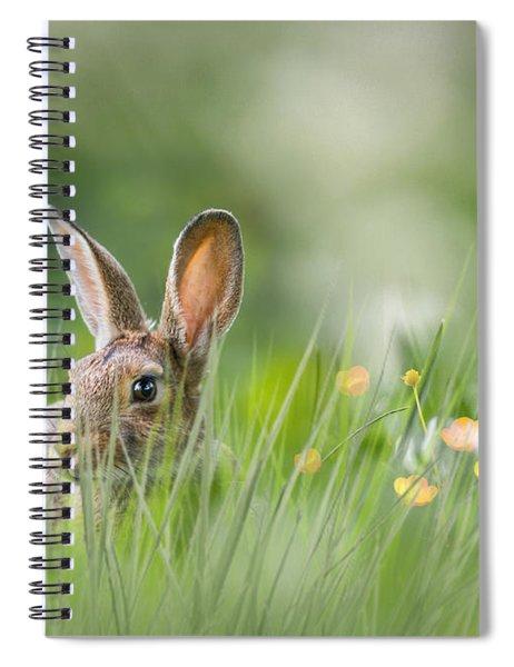 Little Hare Spiral Notebook