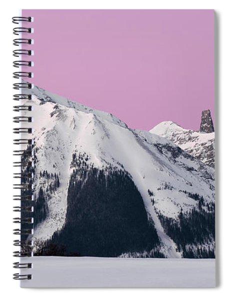 Lizard Head  Spiral Notebook