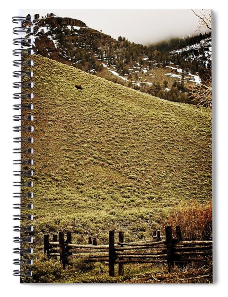 Lone Bison Spiral Notebook