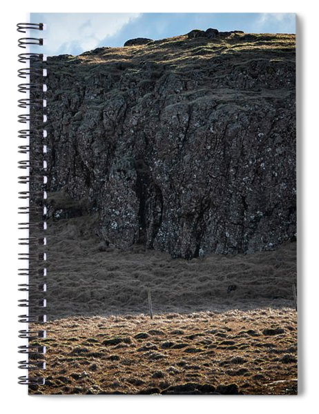 Lone Horse In Iceland Spiral Notebook