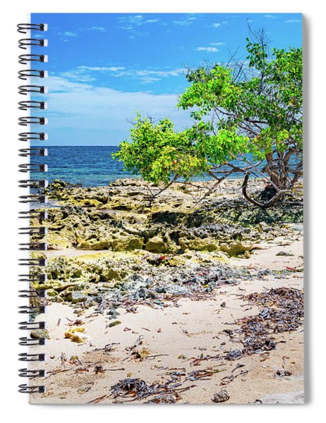 Lone Shore Tree Spiral Notebook