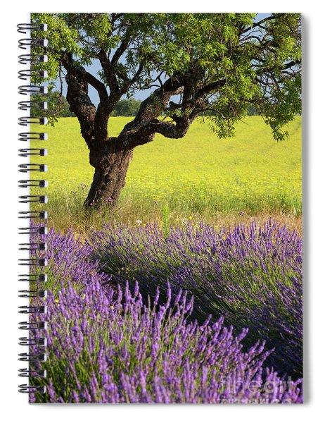 Lone Tree In Lavender And Mustard Fields Spiral Notebook by Brian Jannsen