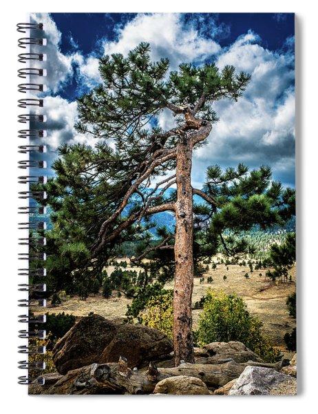 Lone Tree Spiral Notebook