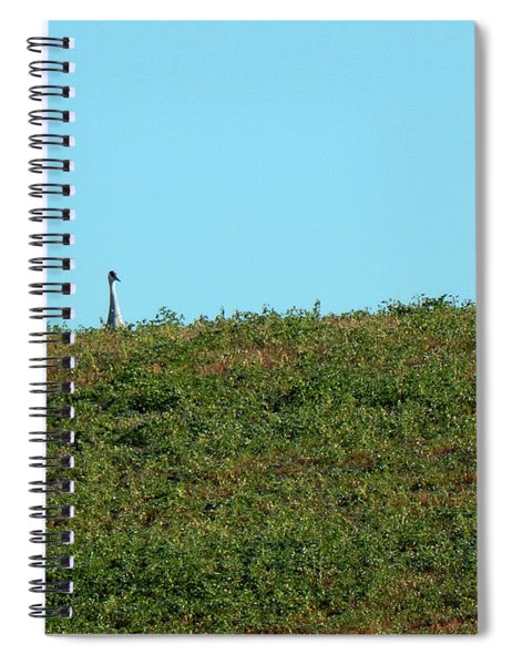 Lonely At The Top Spiral Notebook