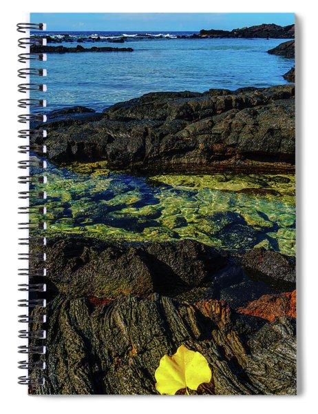 Lonely Leaf Spiral Notebook