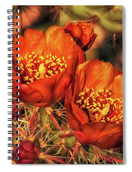 Look But Don't Touch Spiral Notebook