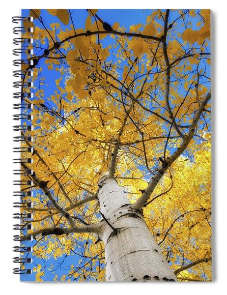 Look Up Spiral Notebook by Rick Furmanek