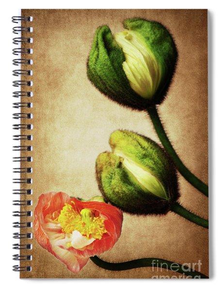 Love Poppies Spiral Notebook