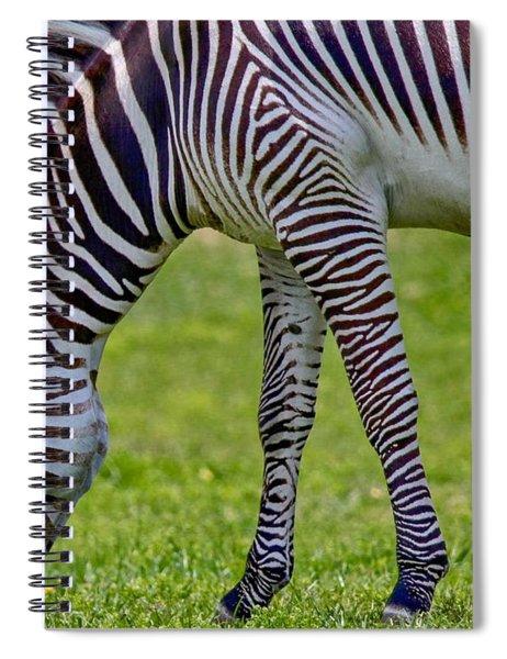 Love Zebras Spiral Notebook