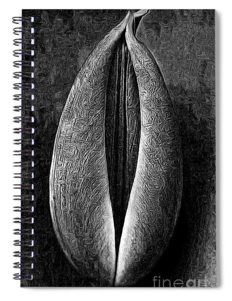 Macro Of Tulip Flowers Spiral Notebook