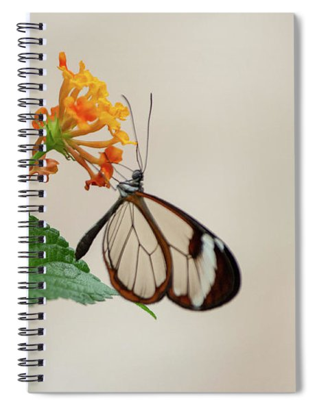 Spiral Notebook featuring the photograph Made Of Glass by Anjo Ten Kate
