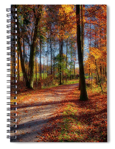 Magic Of The Forest Spiral Notebook