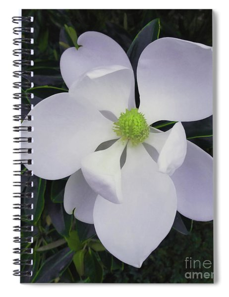 Spiral Notebook featuring the painting Magnolia Flower Photo F9718 by Mas Art Studio