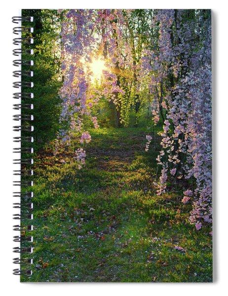Magnolia Tree Sunset Spiral Notebook