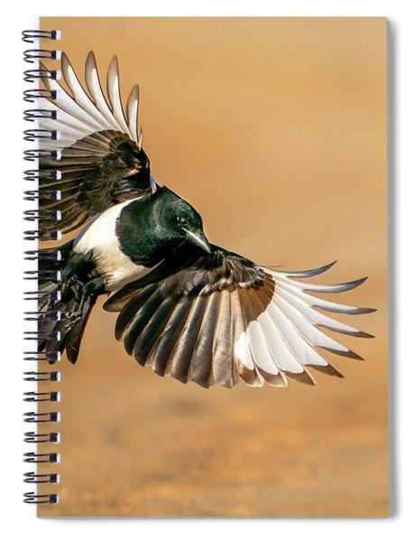 Magpie Beauty Spiral Notebook
