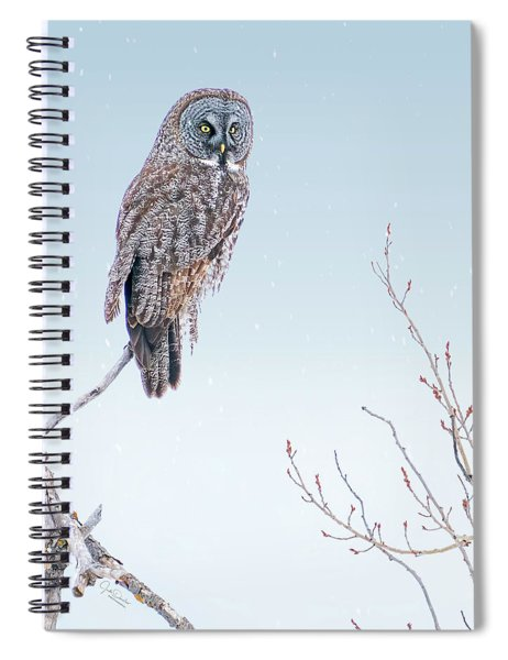 Majestic Great Gray Owl Spiral Notebook