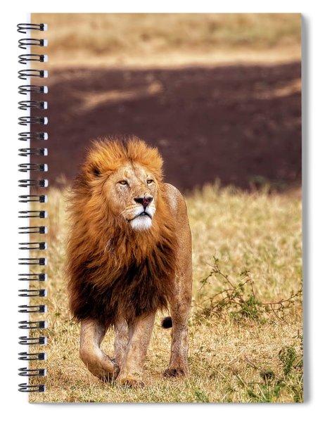 Majesty Spiral Notebook