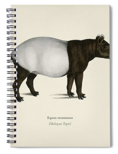 Malayan Tapir  Equus Montanus  Illustrated By Charles Dessalines D' Orbigny  1806-1876  2 Spiral Notebook