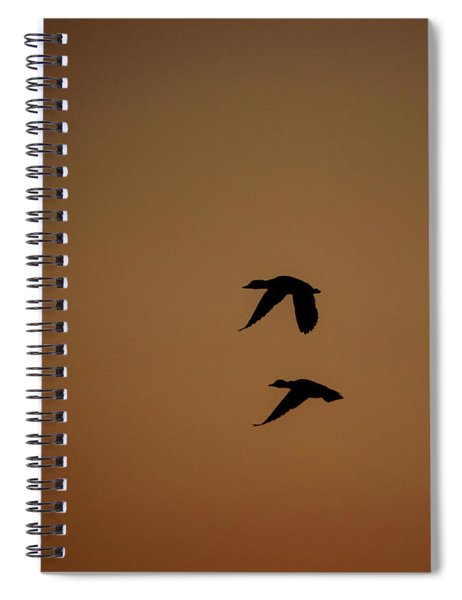 Mallard Morning Spiral Notebook