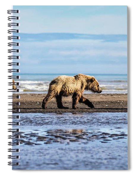 Mama Bear And Her Two Cubs On The Beach. Spiral Notebook