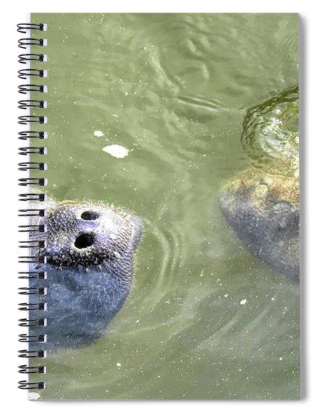 Manatee Love Spiral Notebook