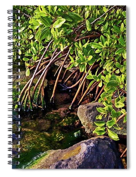 Mangrove Bath Spiral Notebook
