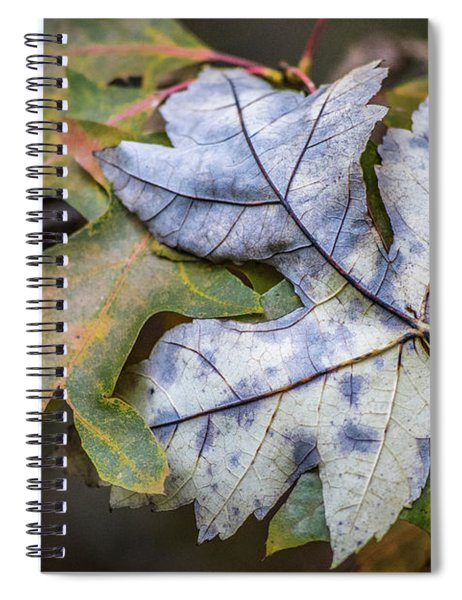 Maple And Oak Spiral Notebook