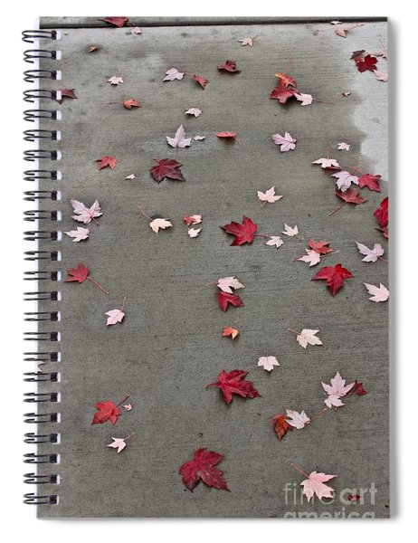 Maple Leaf Stroll Spiral Notebook
