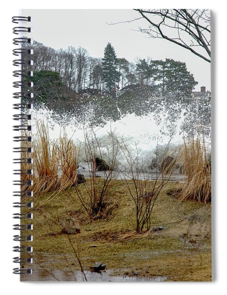 Marsh Puddle Spiral Notebook