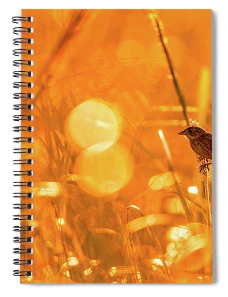 Marsh Sparrow Spiral Notebook