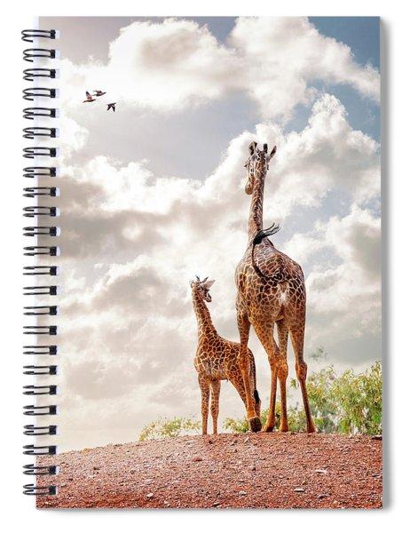Masai Giraffe At Phoenix Zoo Spiral Notebook