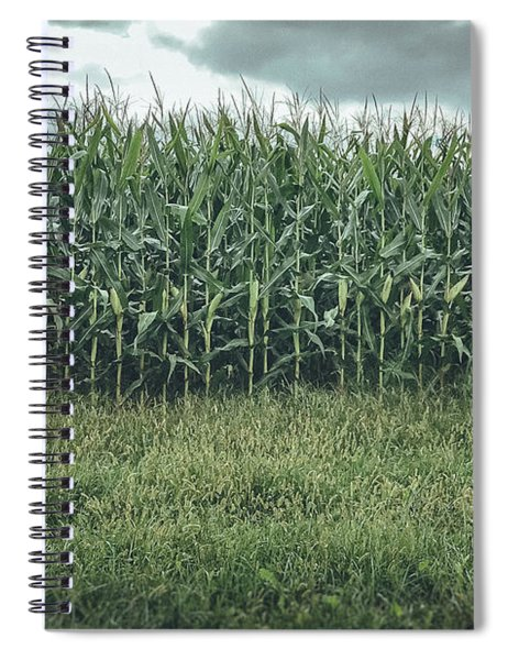Maze Field Spiral Notebook