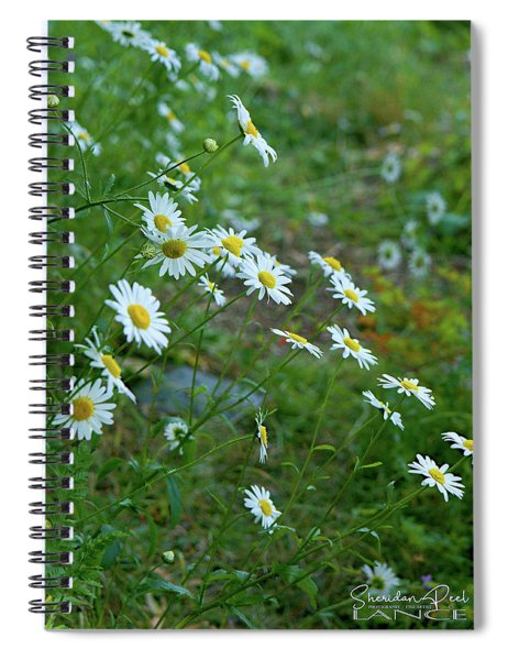 Meadow Spiral Notebook