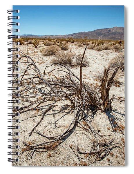 Mesquite In The Desert Sun Spiral Notebook