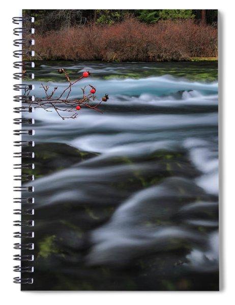 Metolius Berries Spiral Notebook