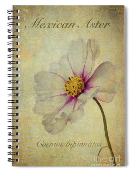 Mexican Aster Spiral Notebook