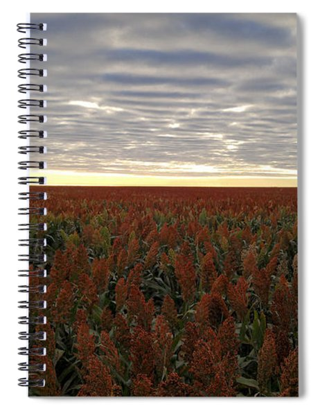 Miles Of Milo Spiral Notebook