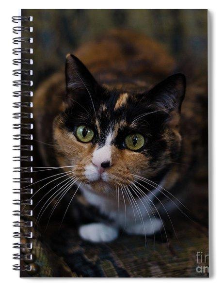 Mischa Spiral Notebook