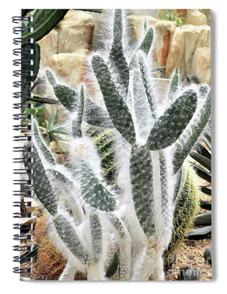 Mojave Prickly Pear Spiral Notebook