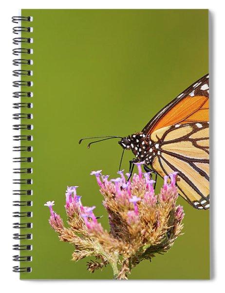 Monarch Butterfly Spiral Notebook