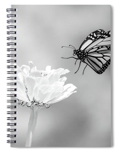 Monarch In Infrared 6 Spiral Notebook