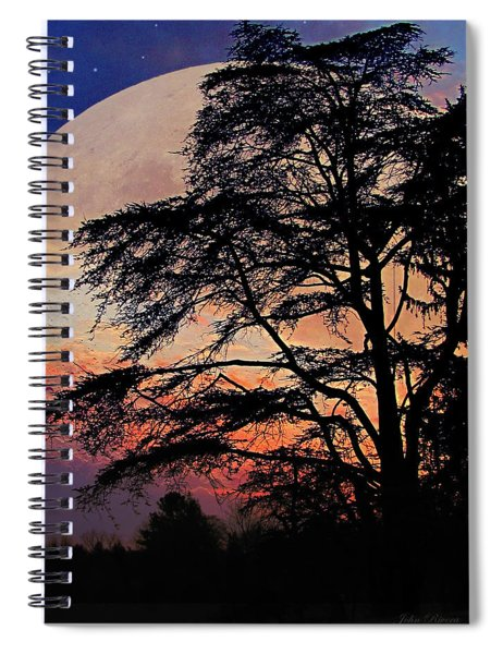 Moon Shadow Spiral Notebook