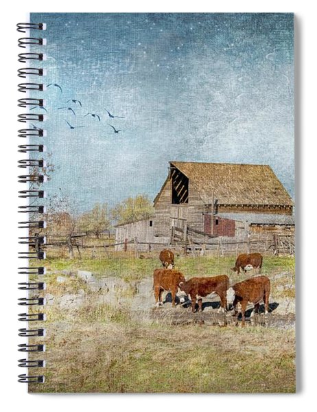 Moonlight In The Daytime Spiral Notebook