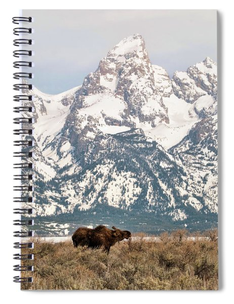 Moose Mountain Spiral Notebook